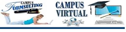 campusformsulting.com